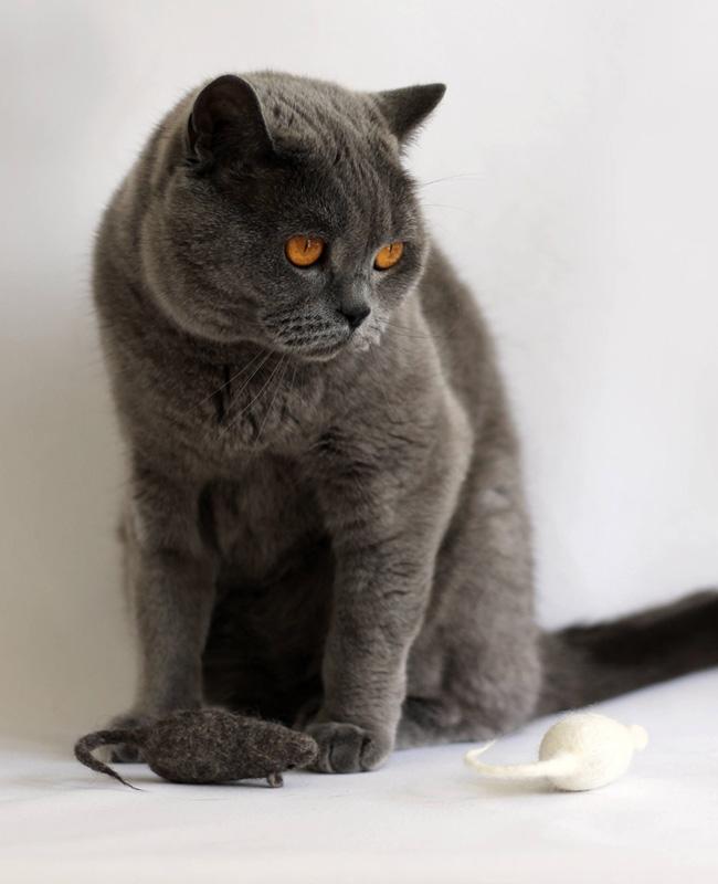 cadeau noel chat etsy souris feutrine