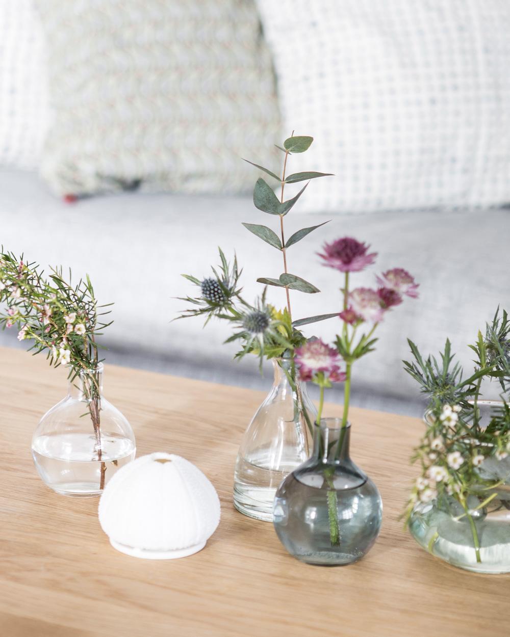 composition de fleurs et plantes