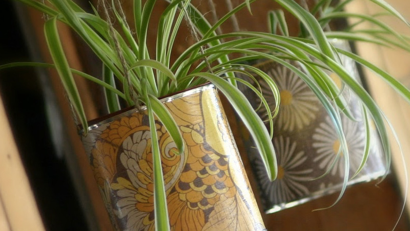 pot conserve diy plante
