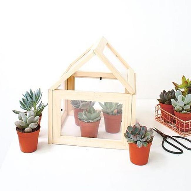 terrarium cadre diy mini