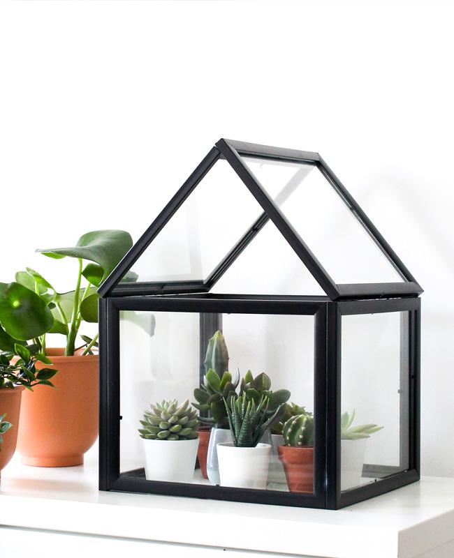 terrarium cadre diy noir