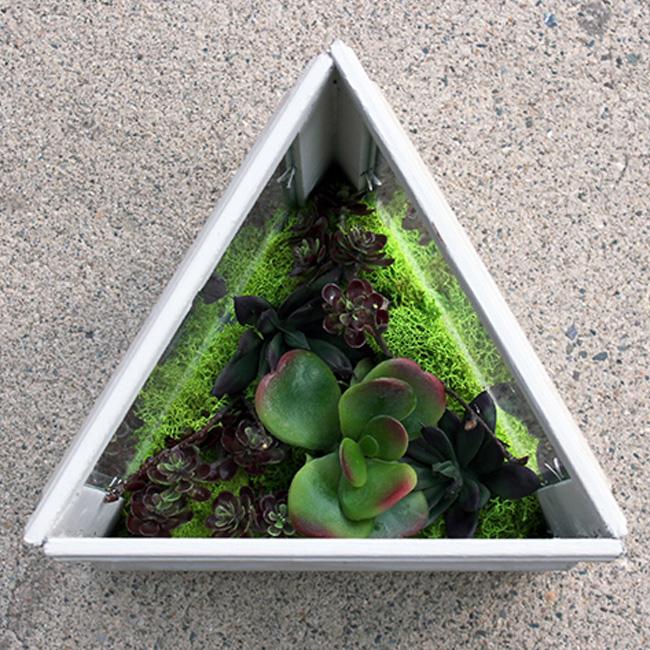 terrarium cadre diy triangle