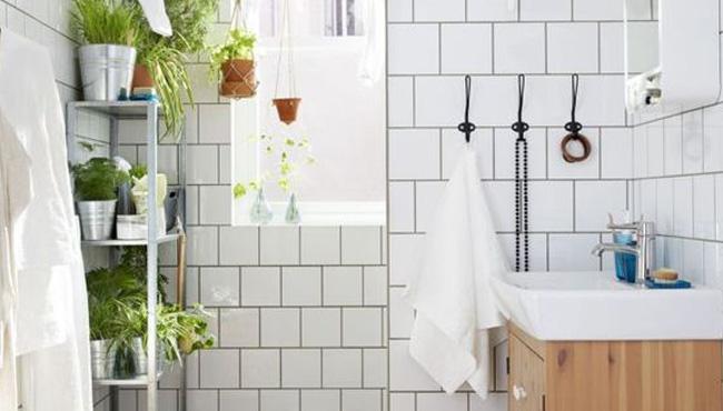 déco salle de bain scandinave petite douche