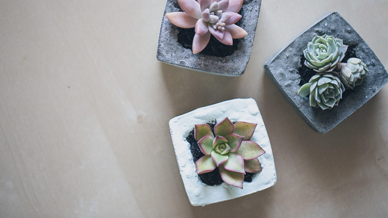 mini pot beton diy