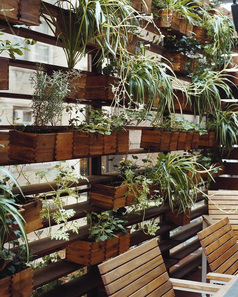 jardin vertical mural bois diy