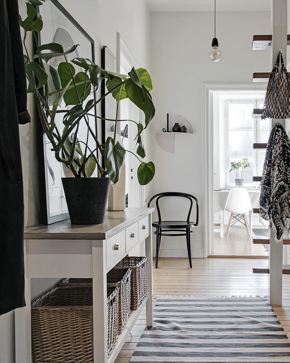 couloir scandinave avec plante verte