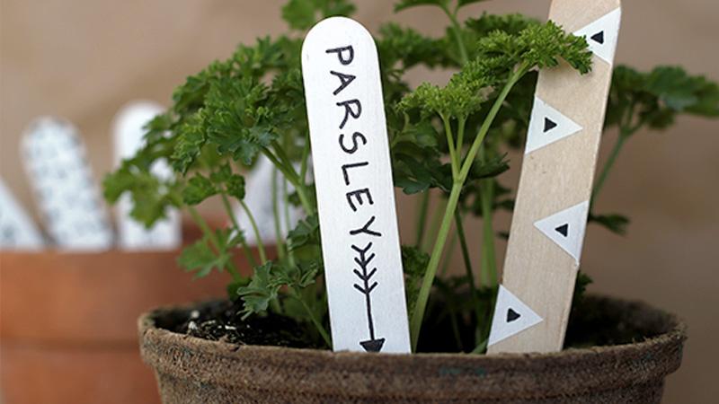 marque plante bois diy