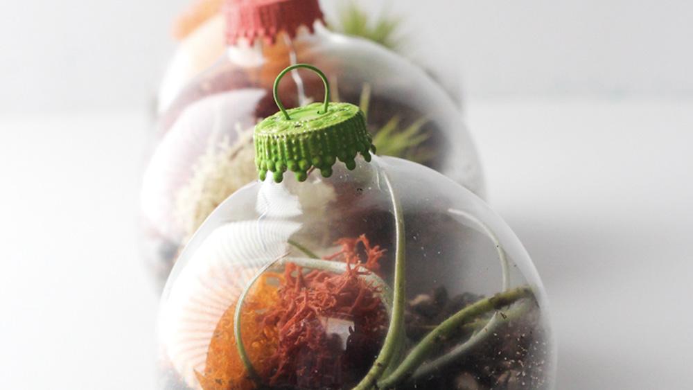 terrarium boule noel diy