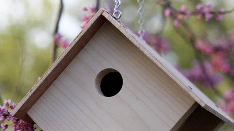 nichoir oiseau diy