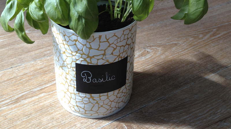plante aromatique conserve diy