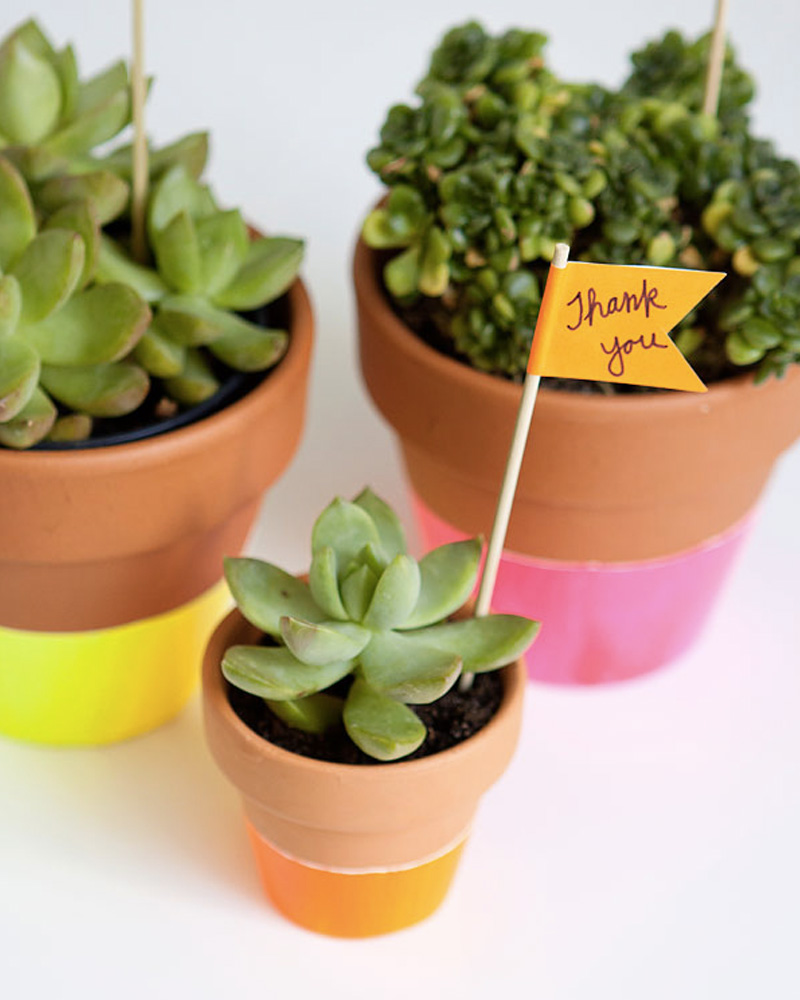 pot fluo diy plante