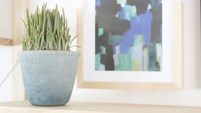 pot ombre diy plante