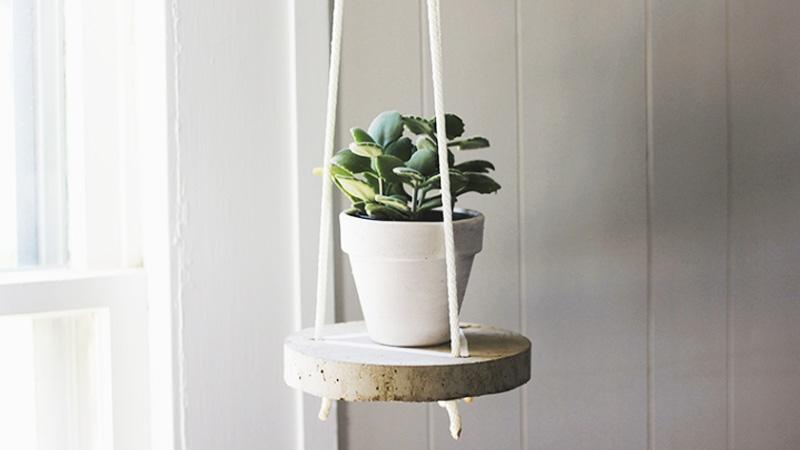plante suspendue diy beton