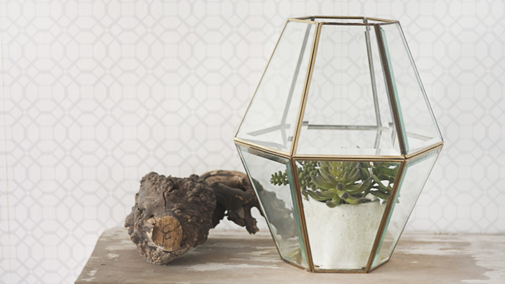 terrarium facette diy
