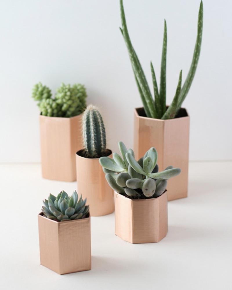 pot cuivre plante diy