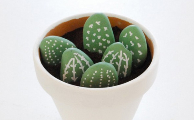 pot cactus diy