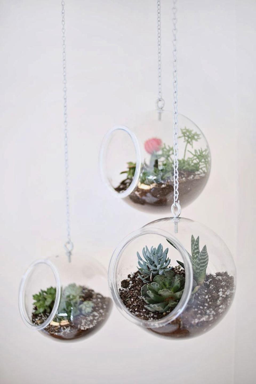8 Idees Diy Pour Creer Un Terrarium Pour Vos Plantes Shake My Blog