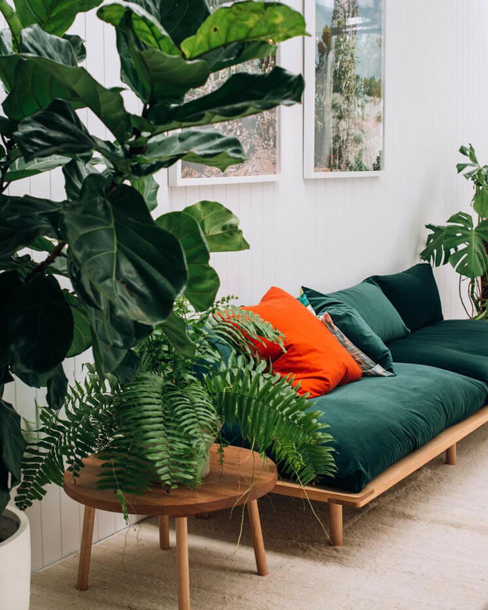 deco vert salon canapé