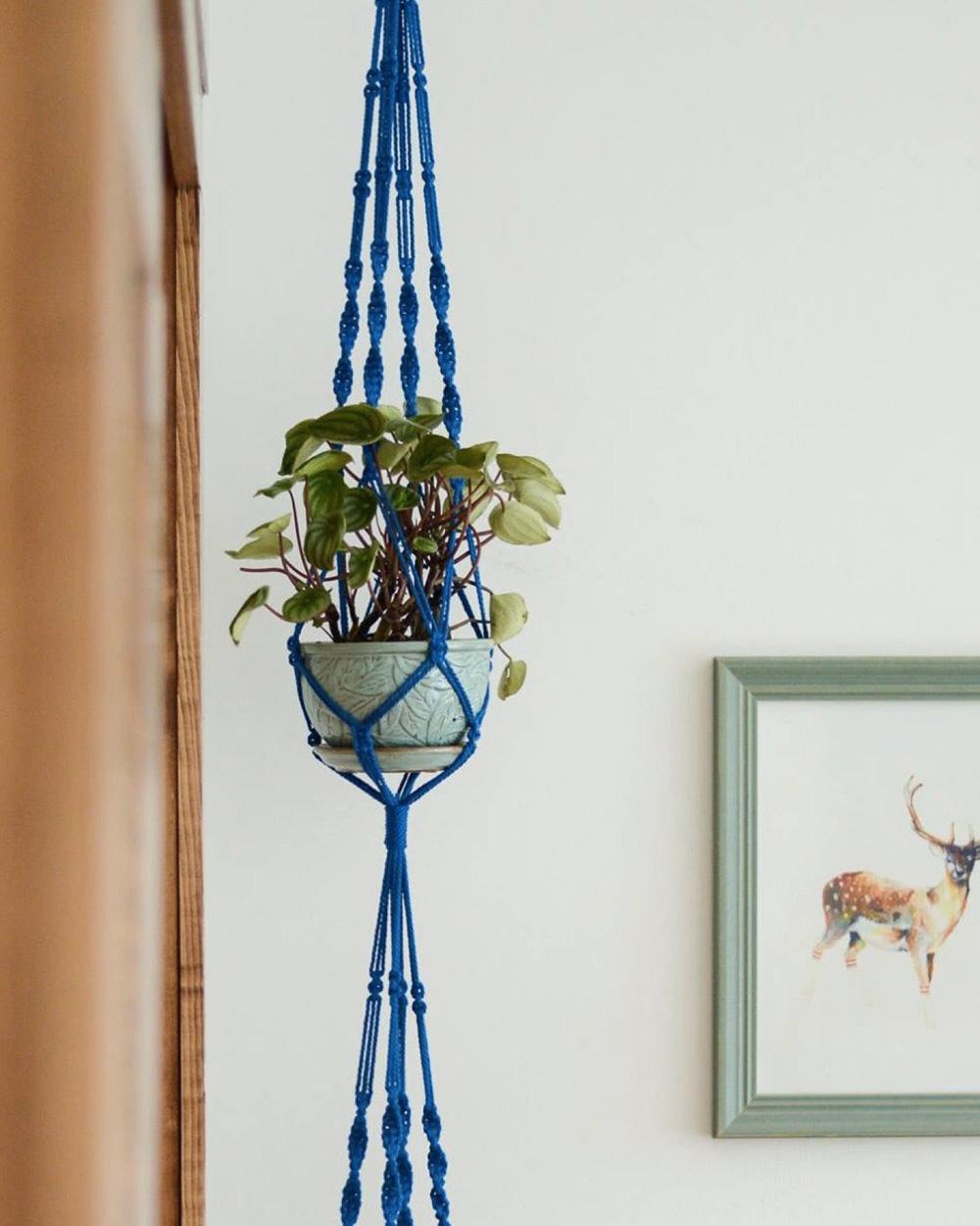 suspension plante diy macramé bleu