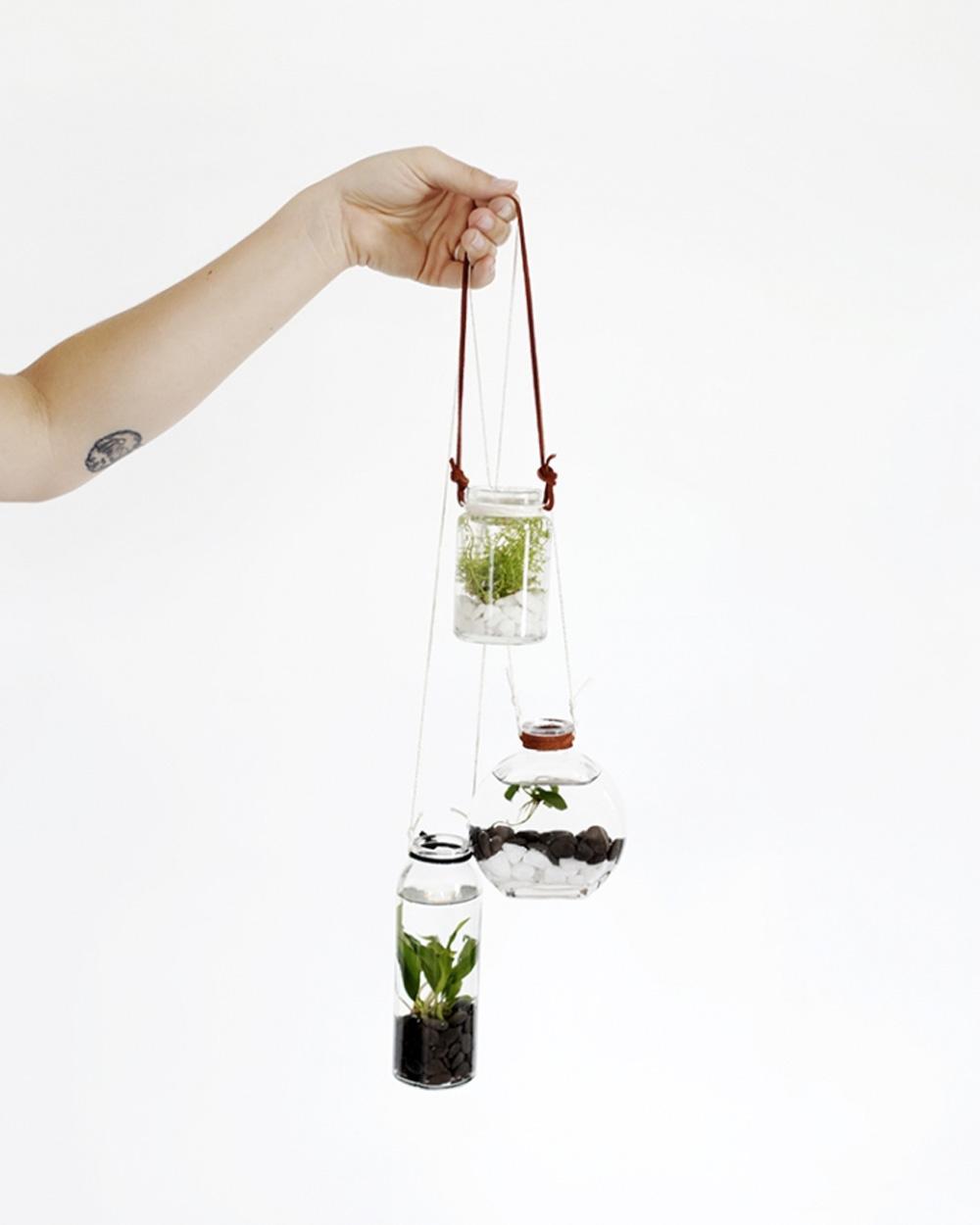suspension plante diy bocal