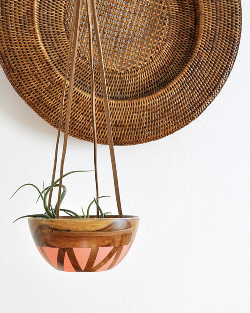 bol diy bois suspension plante
