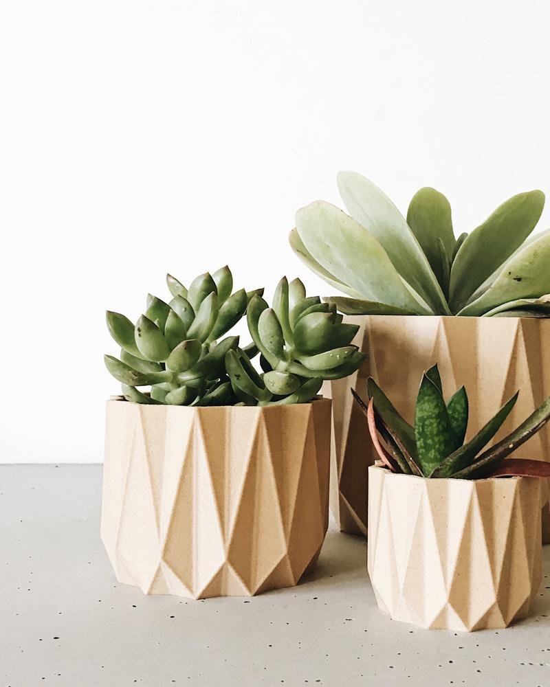 accessoire deco plante pot