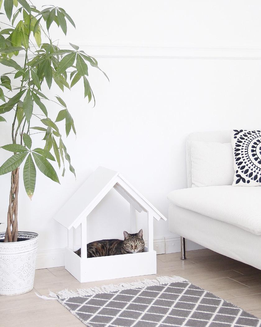 cabane diy chat maison