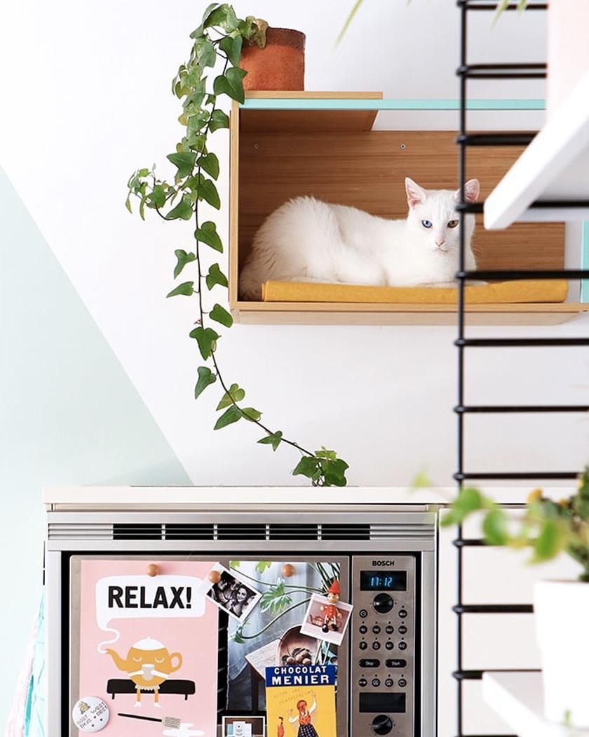 cabane diy chat étagère murale