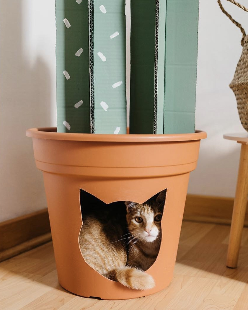 cabane diy chat pot