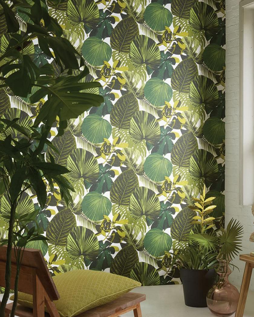 papier peint chambre tropical feuille