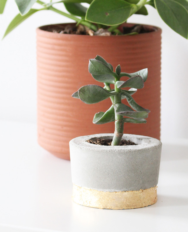 challenge diy pot béton or