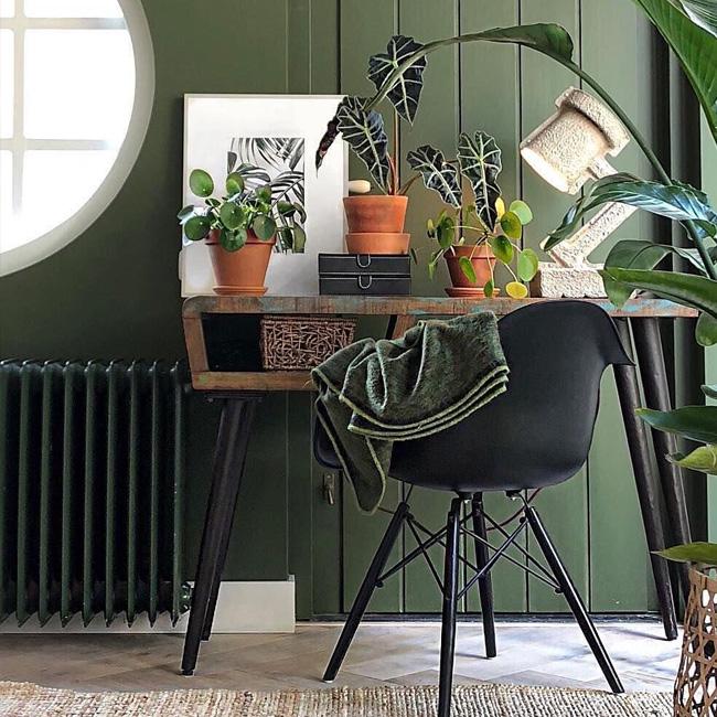deco bureau urban jungle mur vert