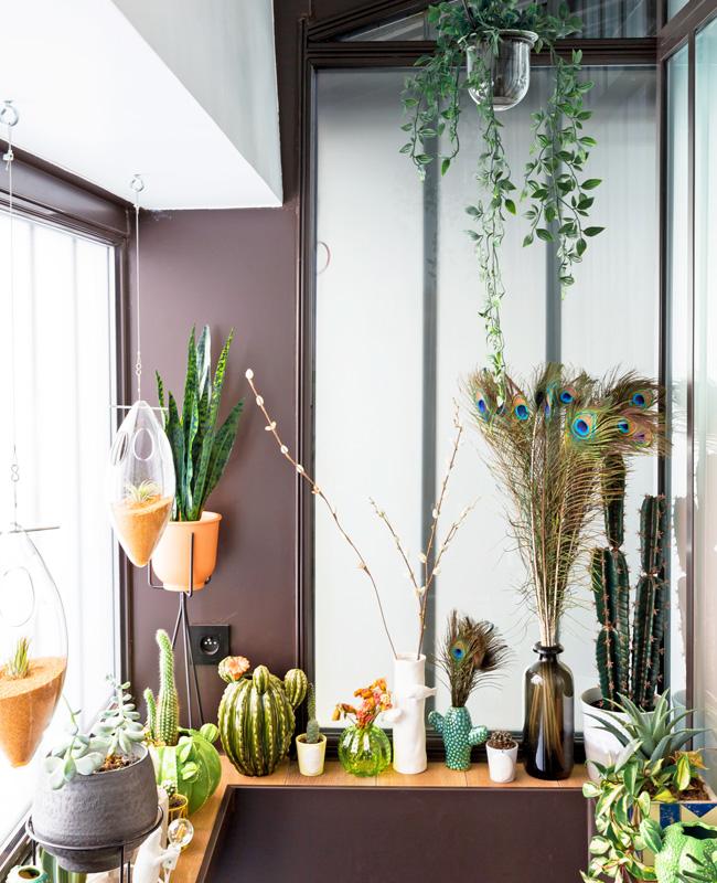 deco bureau professionnel moderne coloré neva plantes