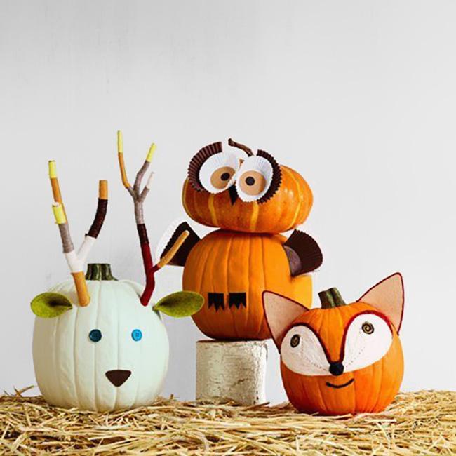 citrouille peinture Halloween diy animaux