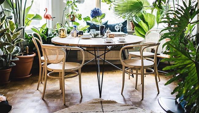 deco urban jungle séjour salle à manger