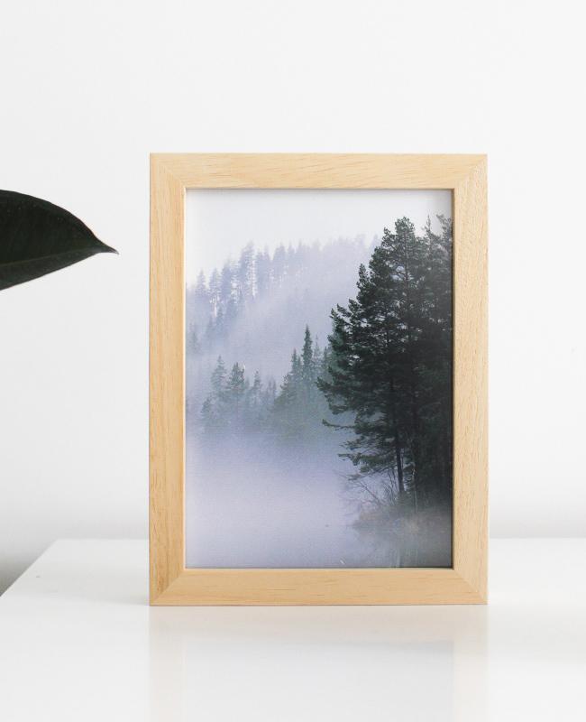 affiche posterlounge forêt