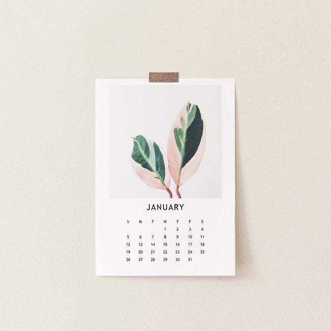 etsy fav calendrier 2020 végétal