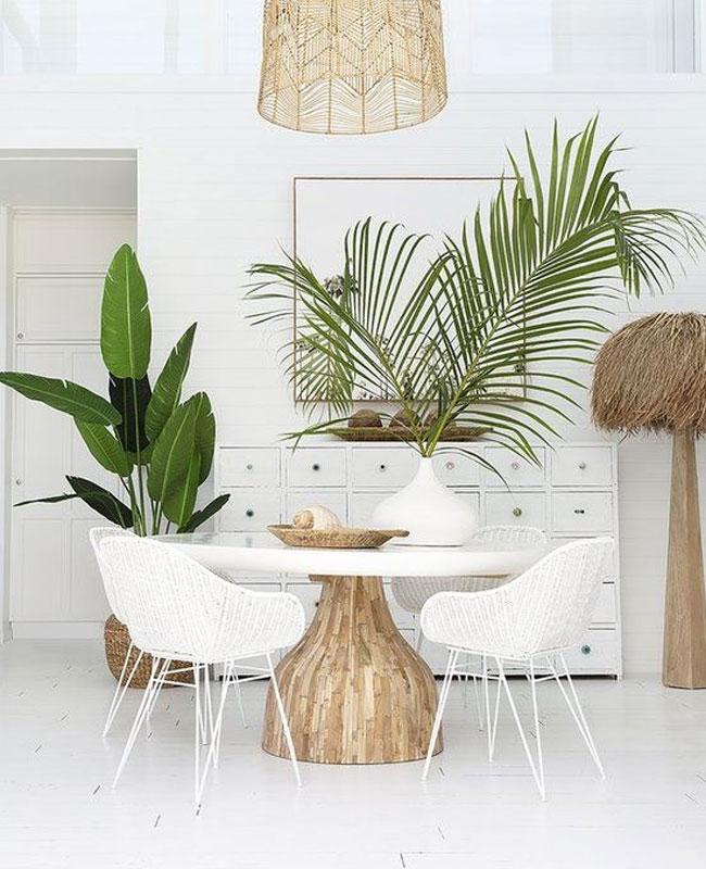 deco salle a manger blanc et bois tropical