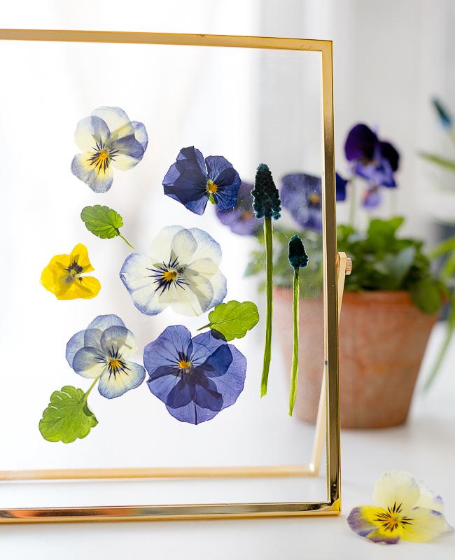 diy fleurs sechees cadre
