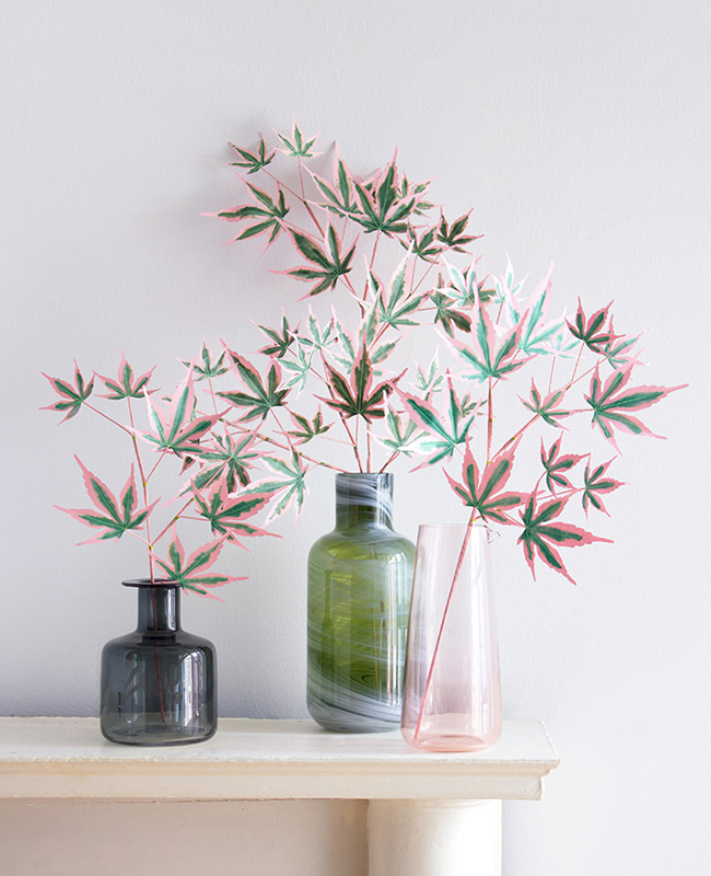 plante papier tuto diy érable japonais