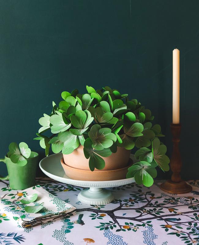 plante papier tuto diy trèfle