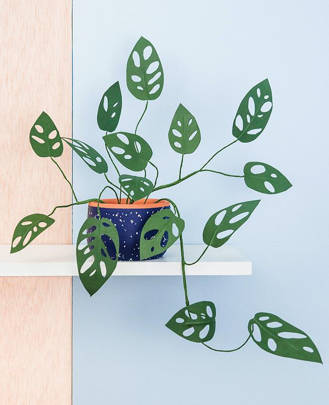 plante papier tuto diy monstera