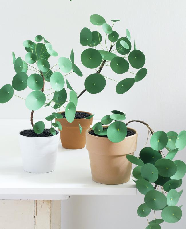 plante papier tuto diy pilea