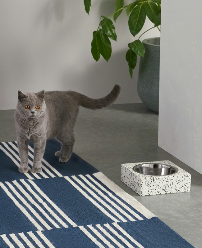 gamelle chat terrazzo